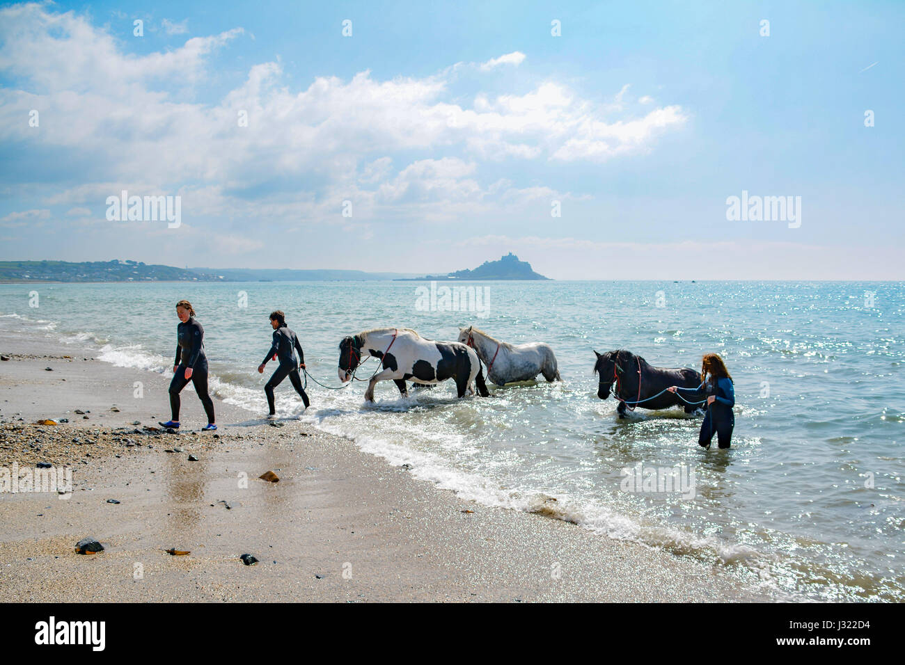Camargue Badewanne Cornwall Swimming With Horses Stock Photos And Swimming With Horses