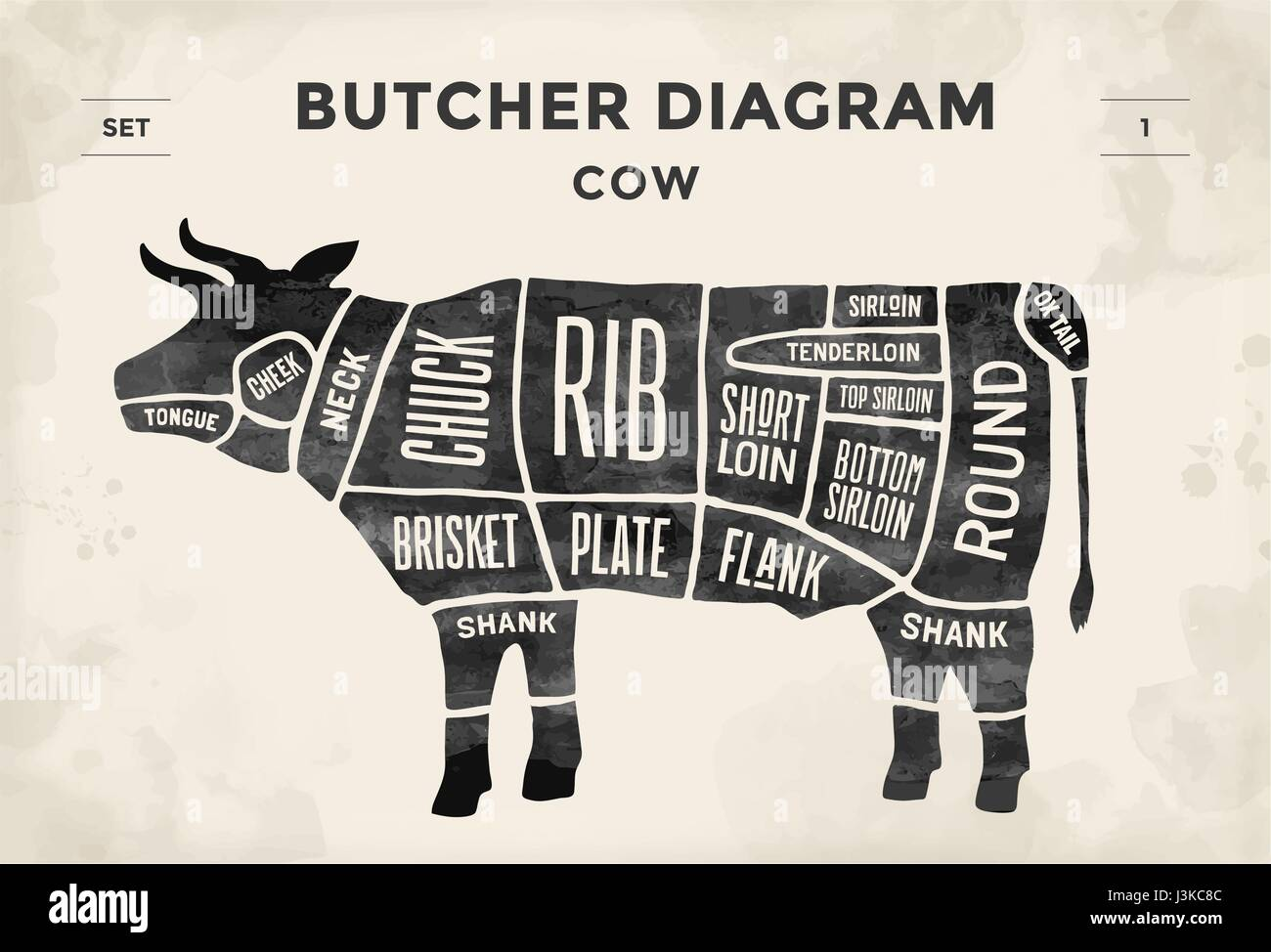 hight resolution of cut of meat set poster butcher diagram and scheme cow vintage typographic hand