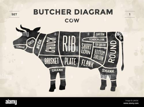 small resolution of cut of meat set poster butcher diagram and scheme cow vintage typographic hand