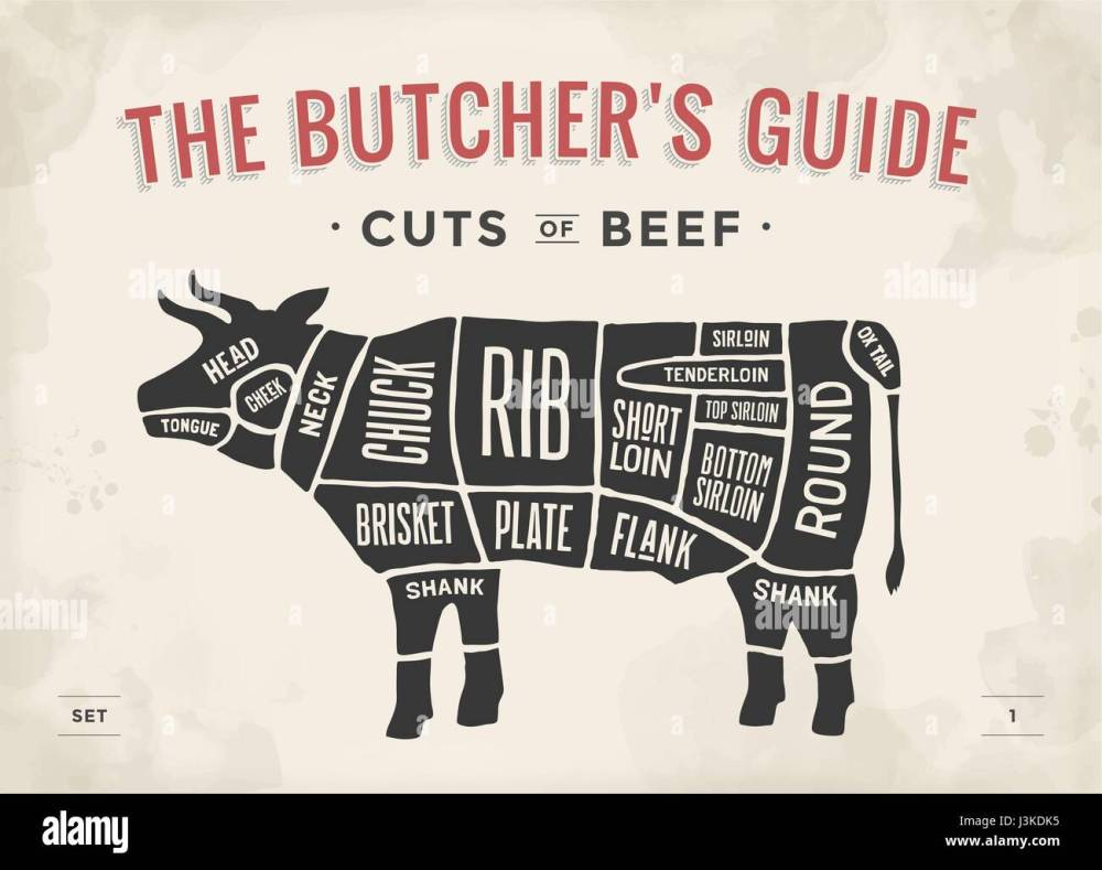 medium resolution of cut of beef set poster butcher diagram and scheme cow vintage typographic hand