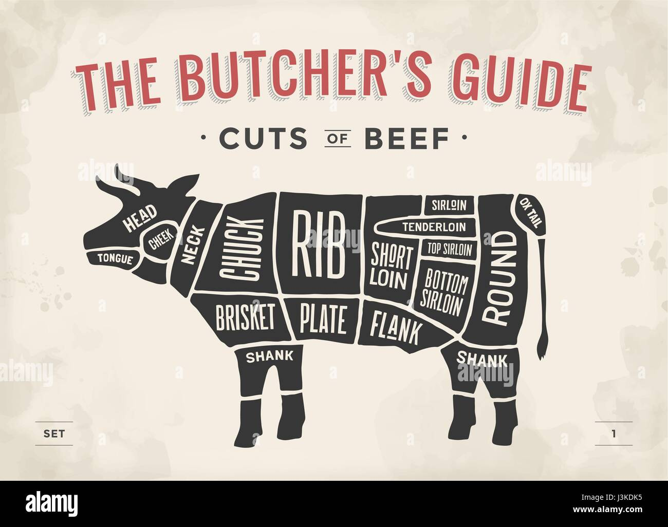 hight resolution of cut of beef set poster butcher diagram and scheme cow vintage typographic hand