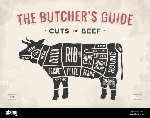 small resolution of cut of beef set poster butcher diagram and scheme cow vintage typographic hand