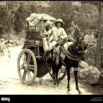 Horse Drawn Carts In Old India 2 Stock Photo Alamy