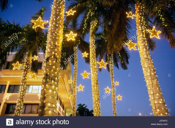 Holiday Lights Miami Fl