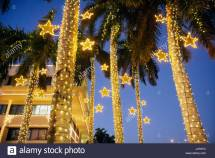 Miami Beach Florida City Hall Palm Trees Dusk Christmas