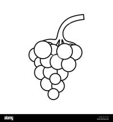 Grapes Outline High Resolution Stock Photography and Images Alamy