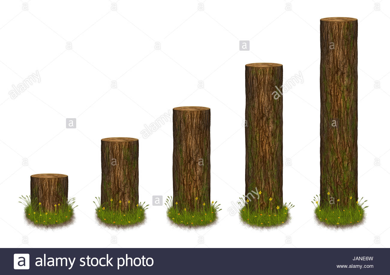 hight resolution of statistics chart formed as tree trunks statistics diagram in nature style illustration