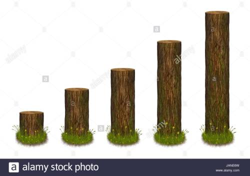 small resolution of statistics chart formed as tree trunks statistics diagram in nature style illustration