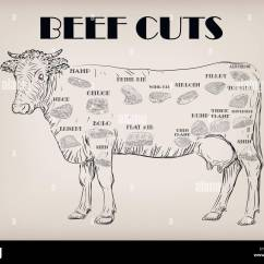 Beef Cow Cut Diagram Ryobi Ss30 Fuel Line Bull Whole Carcass Cuts Parts Infographics