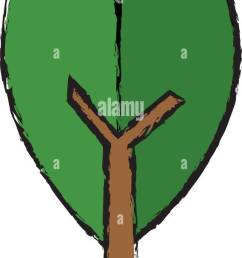green leaf natural environment ecology symbol stock vector [ 569 x 1390 Pixel ]