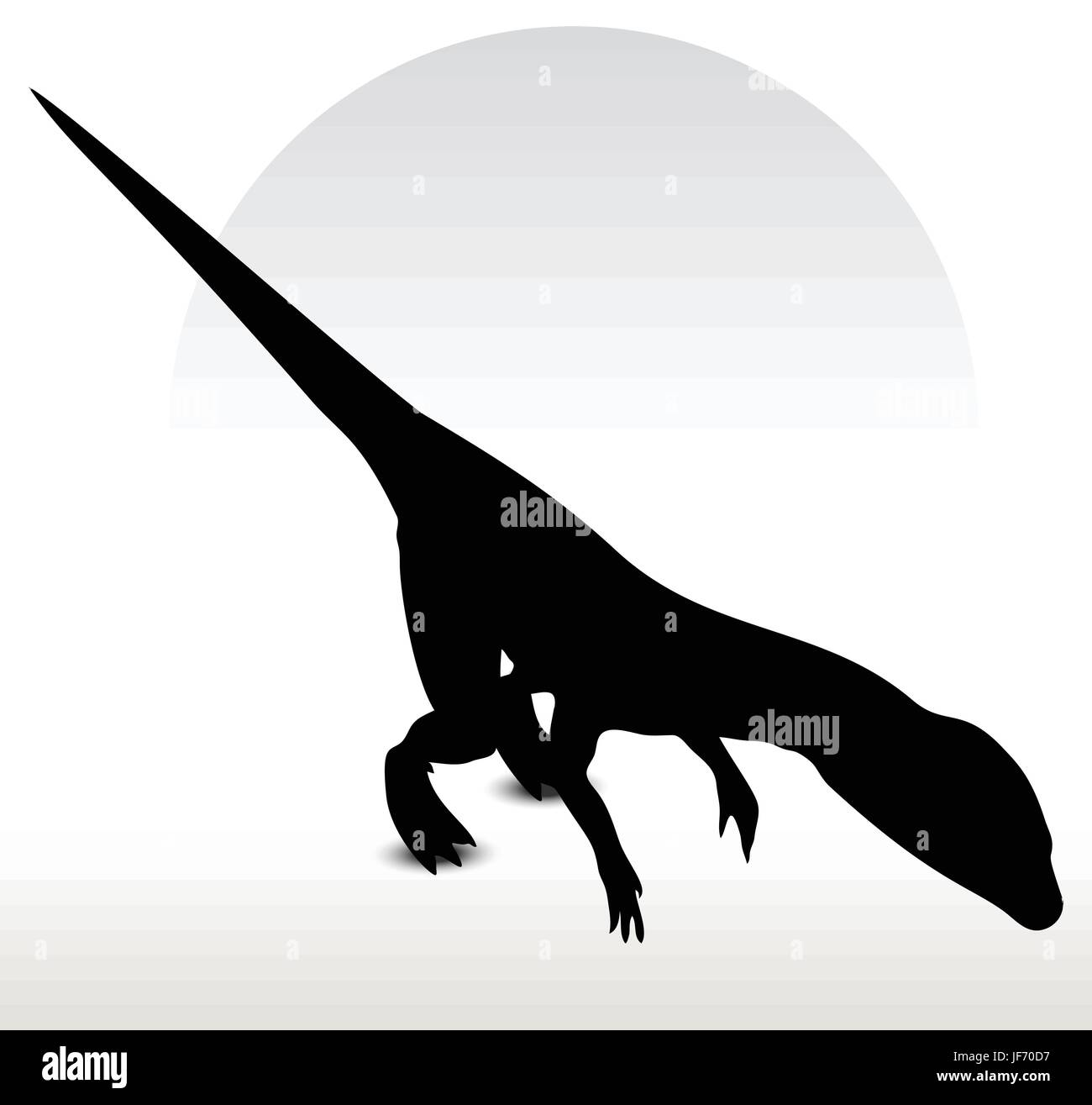 Dinosaurs Stock Vector Images