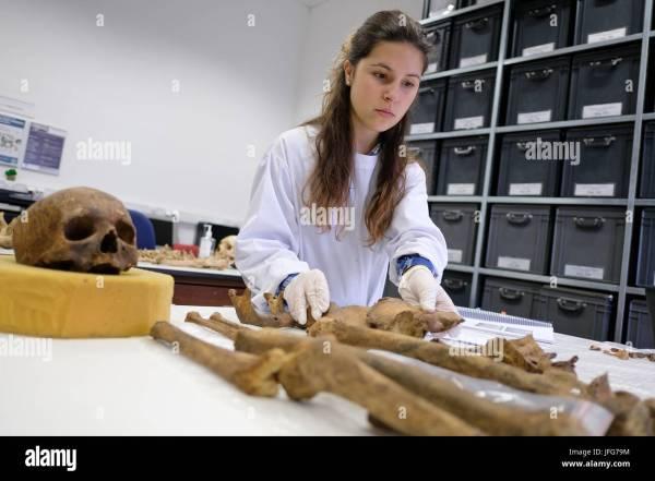 Archaeology Skeleton Stock &