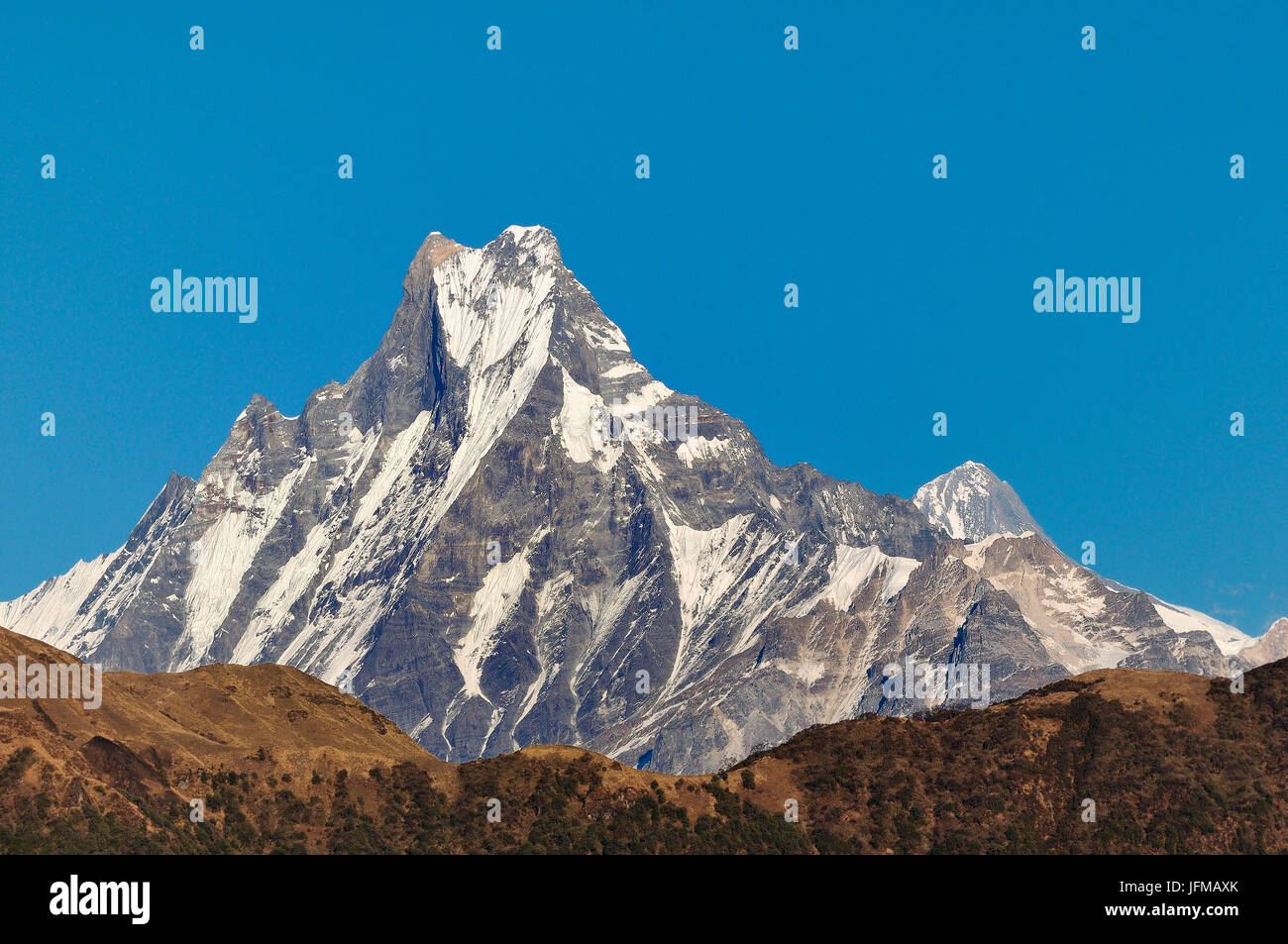 Himalaya Halle 6993 High Resolution Stock Photography And Images - Alamy