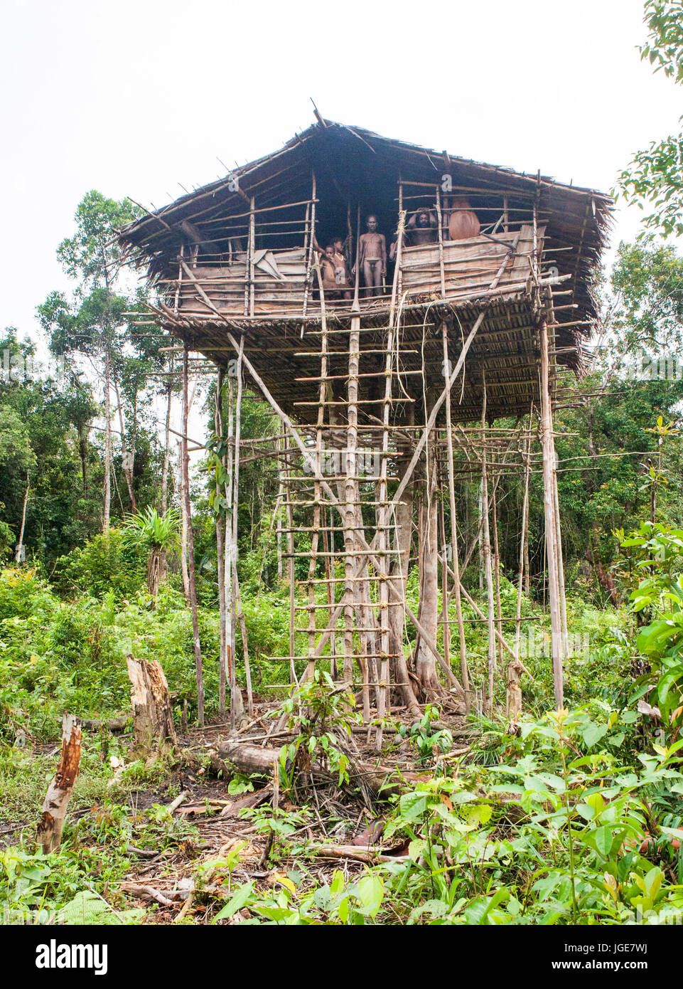 Indonesia Onni Village New Guinea June 24 Traditional House Stock Photo Alamy