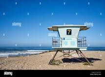 Sea Shells California Stock &
