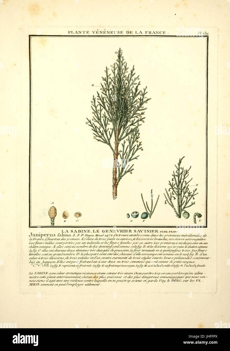 Herbier De La France 10038564186 Stock Photo 148473778 Alamy