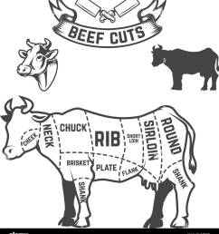 beef cuts butcher diagram cow illustrations on white background design elements for poster  [ 1193 x 1390 Pixel ]