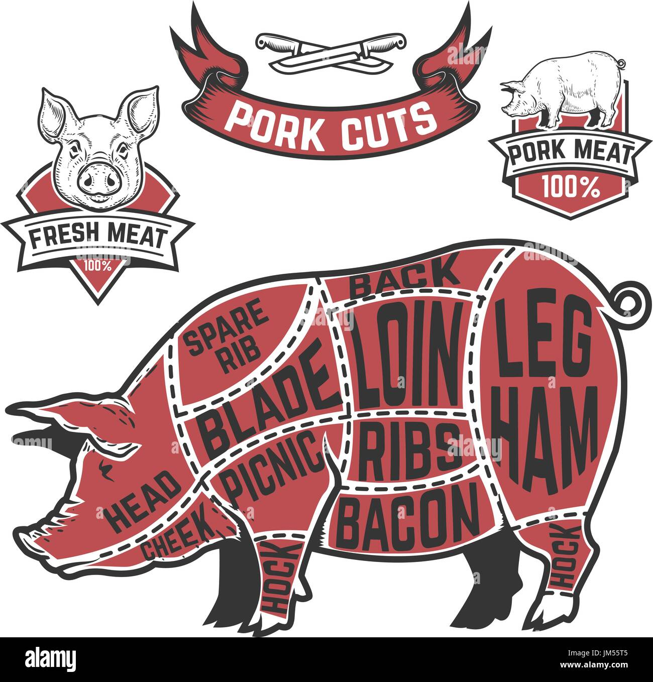 pork butcher cuts diagram how to read building wiring cow illustrations on white background design elements for poster menu vector illustration
