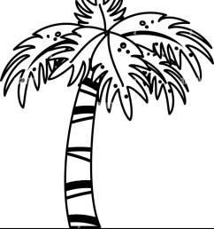 palm tree icon image stock image [ 1144 x 1390 Pixel ]