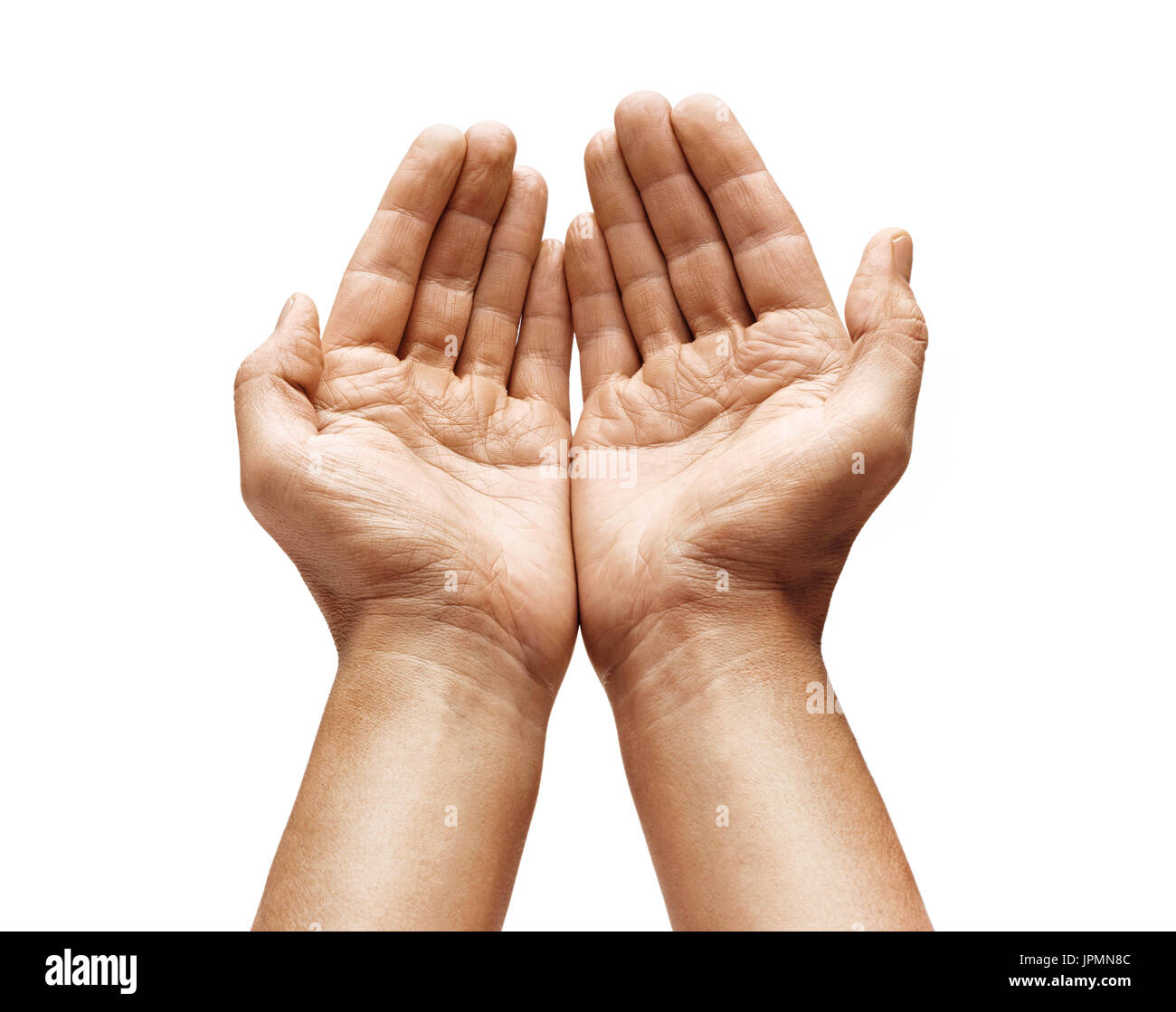 cupped hands stock photos