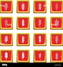ear corn icons set red stock vector [ 1300 x 1369 Pixel ]