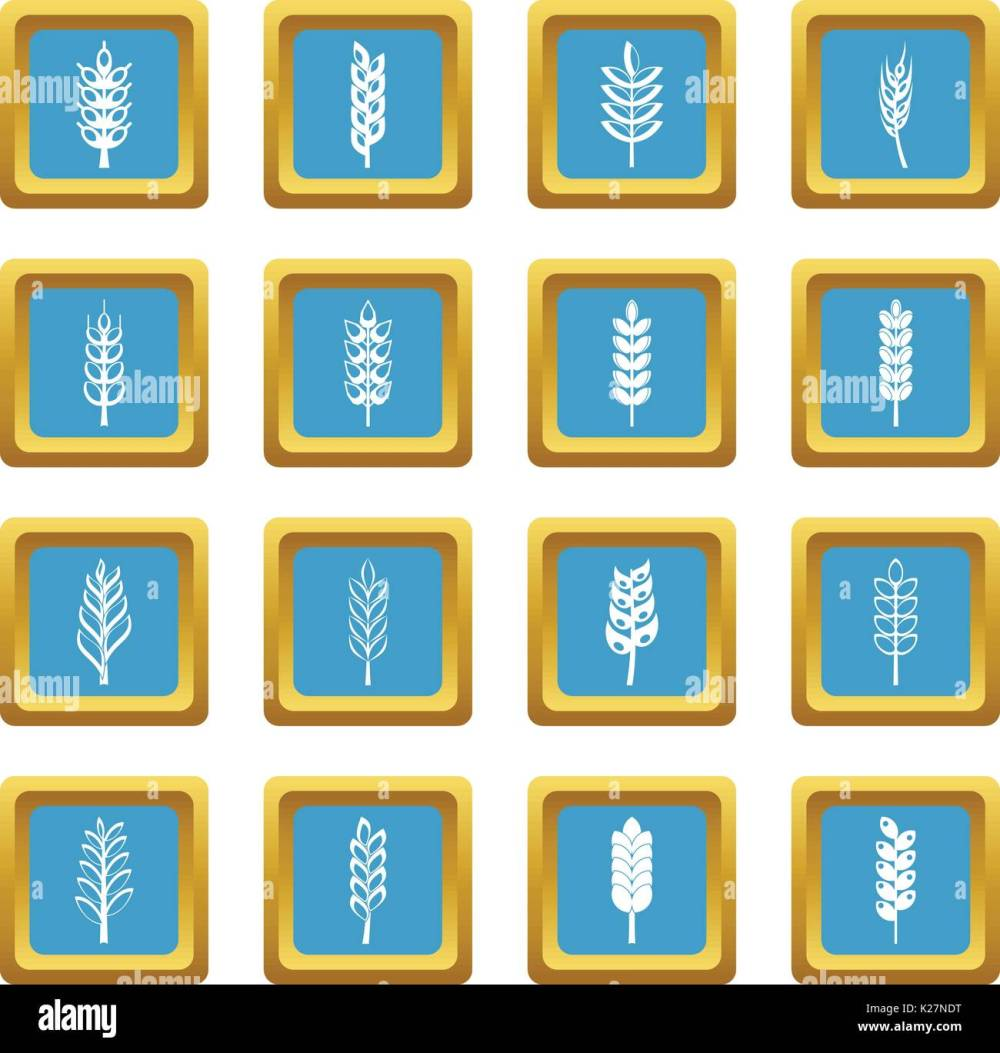 medium resolution of ear corn icons azure stock vector
