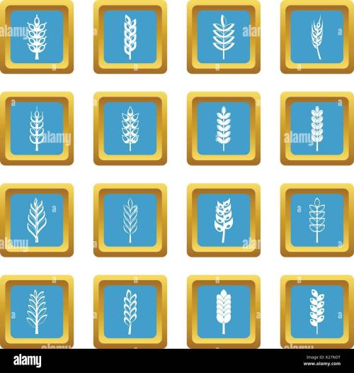 small resolution of ear corn icons azure stock vector