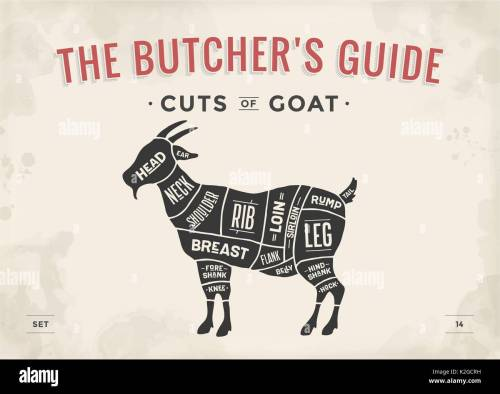 small resolution of poster butcher diagram scheme goat