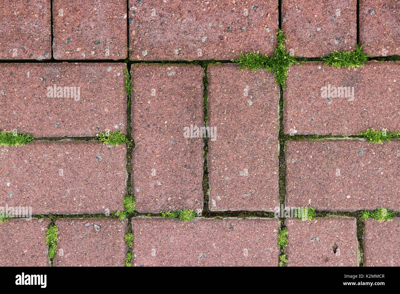 Moss Granite Pavers Textures