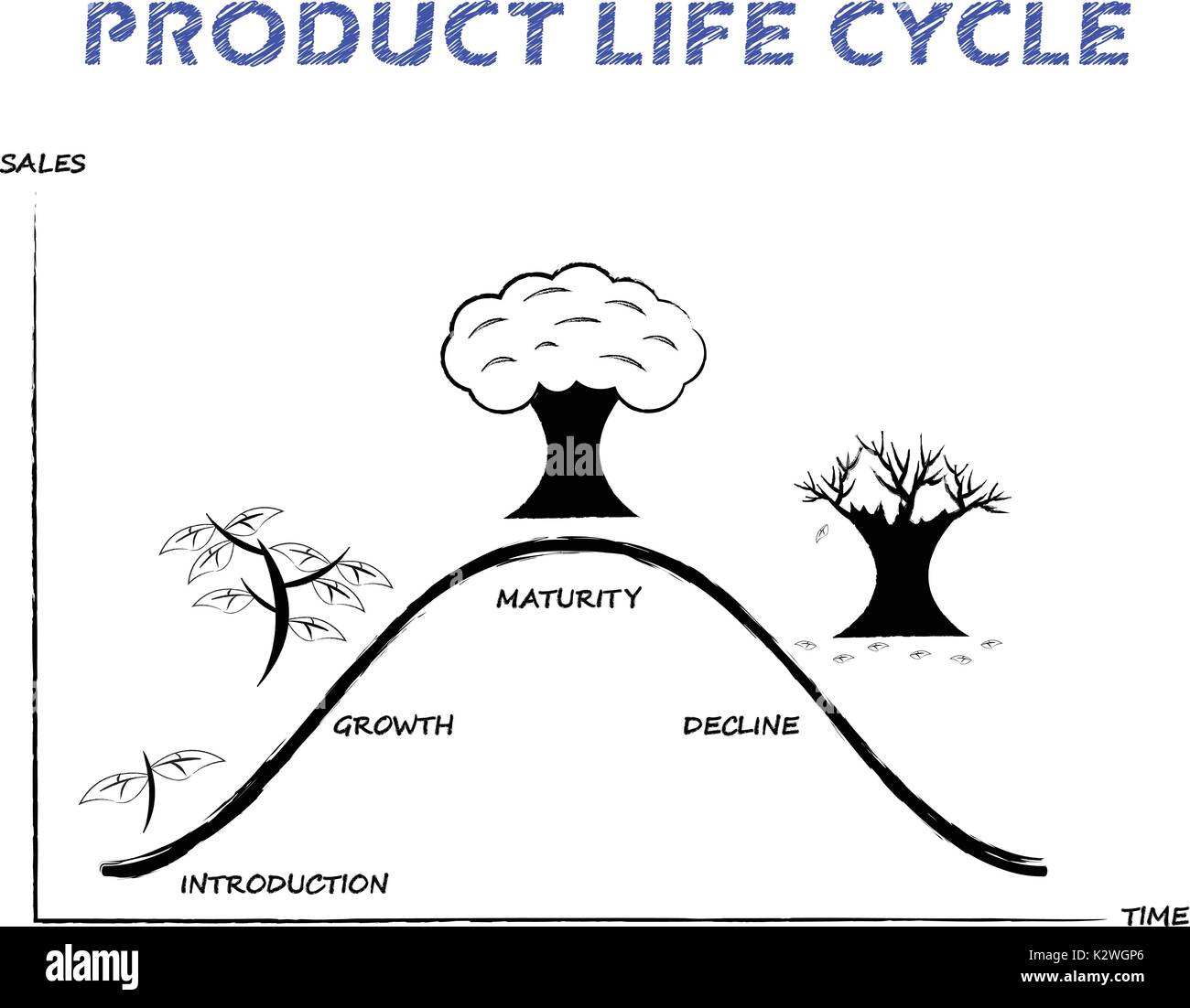 hight resolution of black white product life cycle diagram is drew by pencil on white background as tree growing four stages introduction growth maturity decline