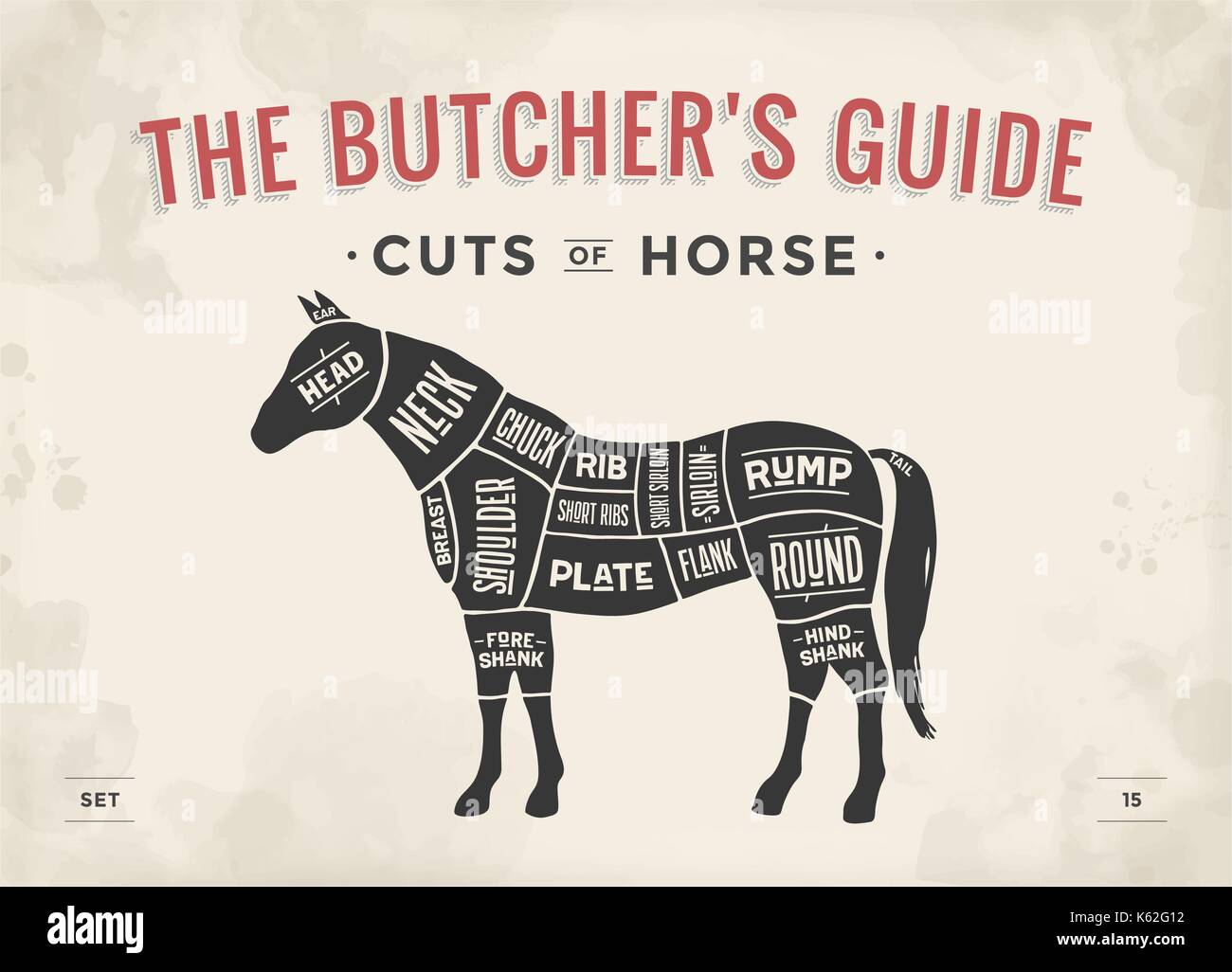 hight resolution of cut of meat set poster butcher diagram scheme horse stock image