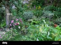 Rockery Garden Stock Photos & Rockery Garden Stock Images ...