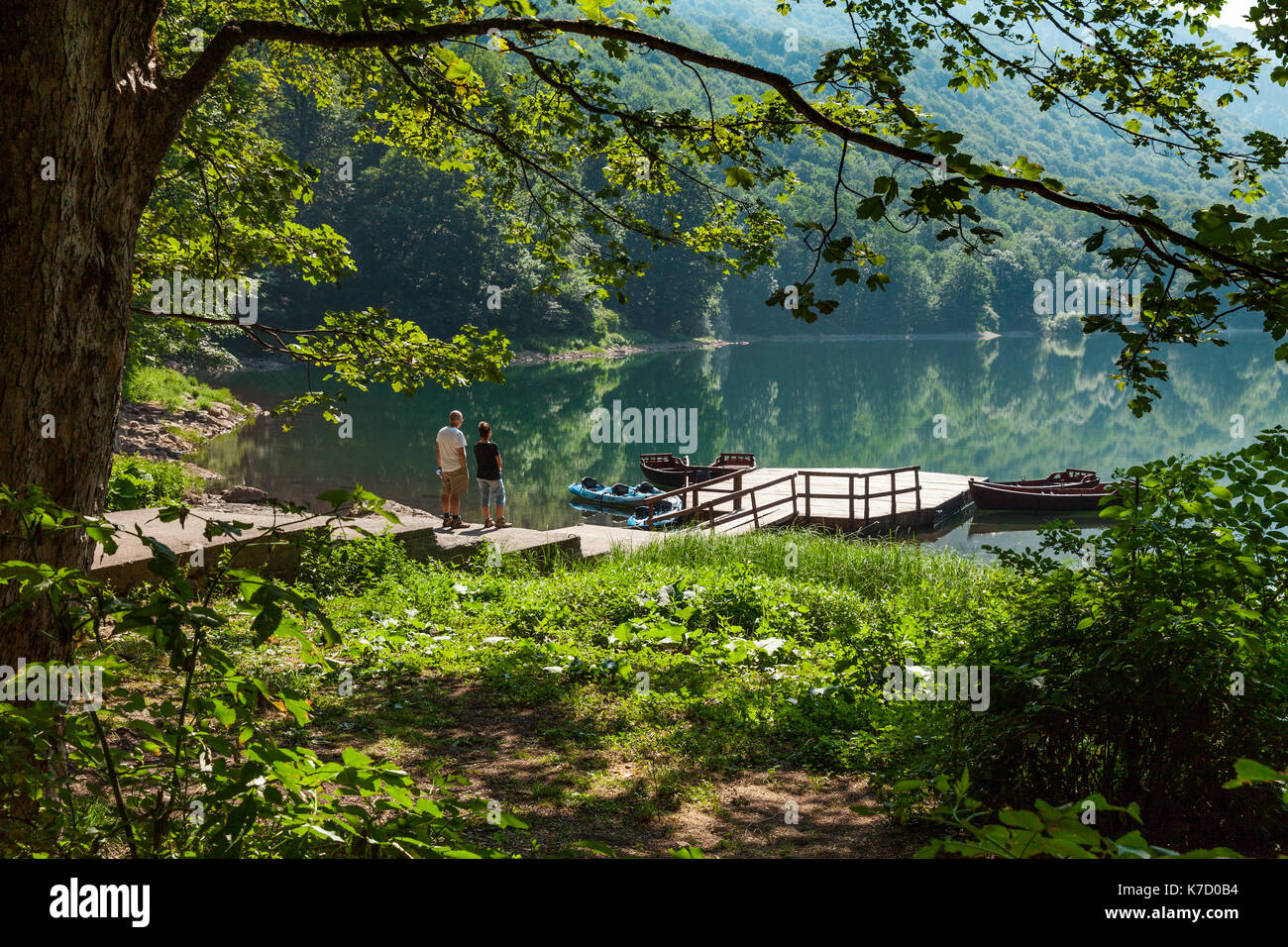 This move from the trump administration will open up more than half of tongass national forest to logging and development. Biogradsko Jezero In Montenegro Protected Forest Stock Photo Alamy