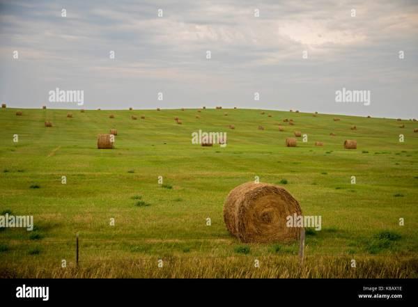 North Dakota Hay Bales Pictures