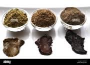 close- of natural henna powder
