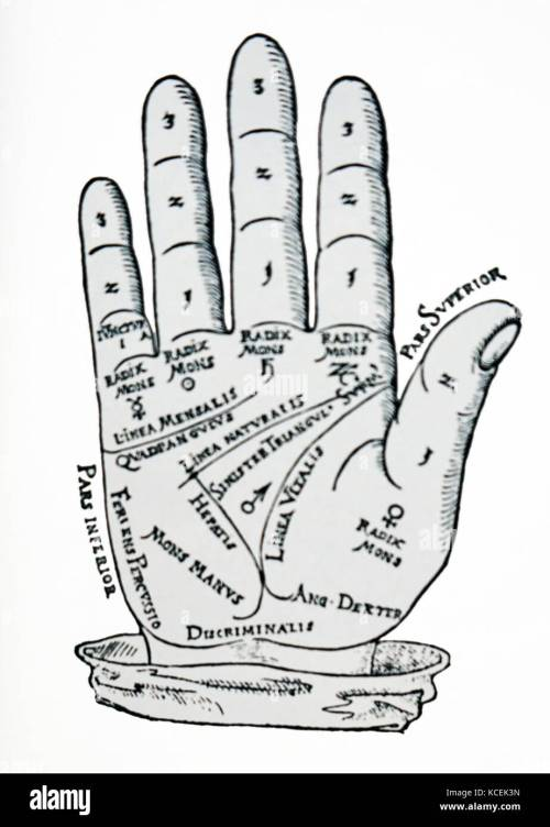 small resolution of a palmistry chart used in the foretelling of the future through the study of the palm