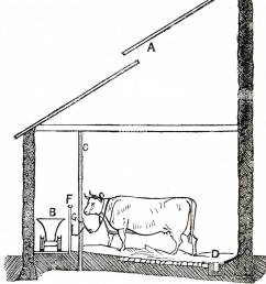 engraving depicting a diagram of a cow house in england a cow house is a [ 1005 x 1390 Pixel ]