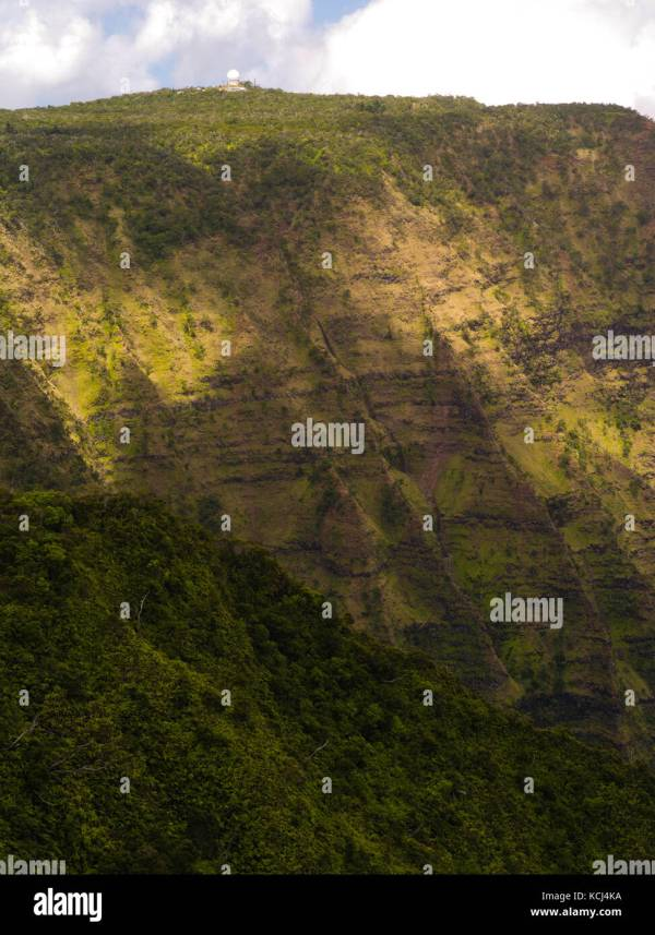 Hawaii Forest Above Stock & - Alamy