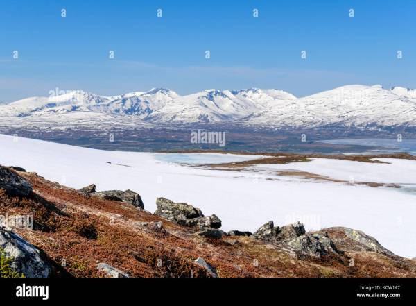 25+ Summer Tundra Biome Landscape Pictures and Ideas on Pro