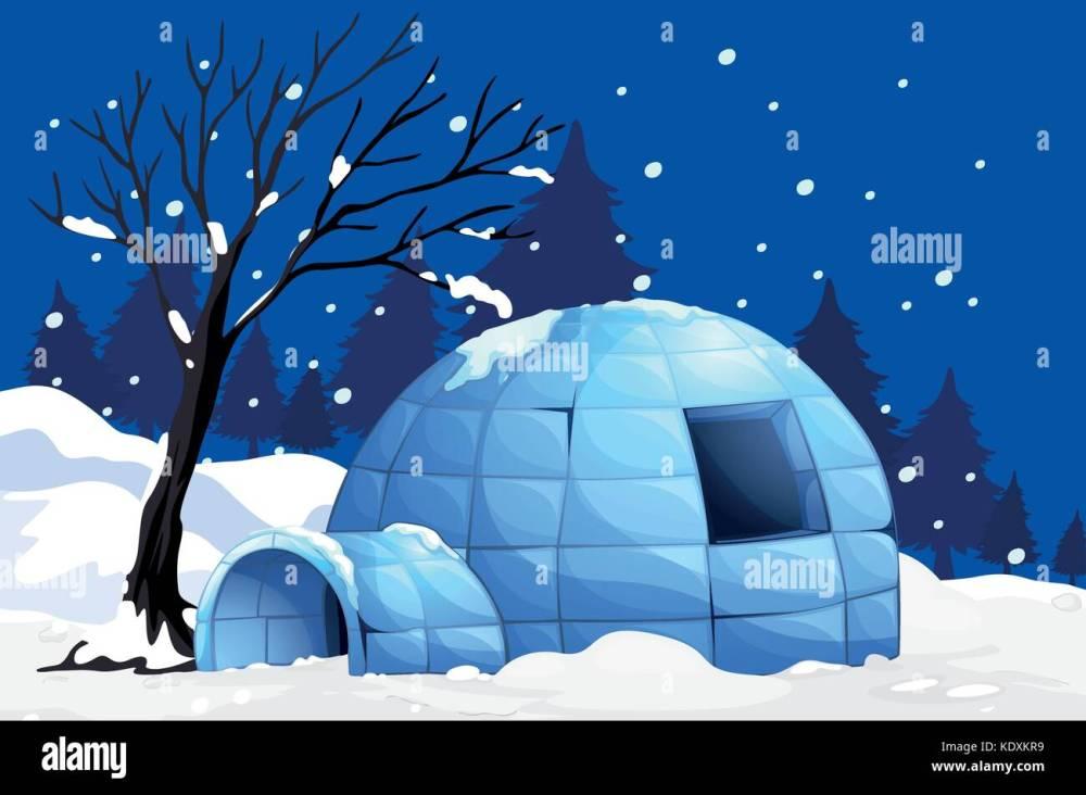 medium resolution of nature scene with igloo on snowy night illustration