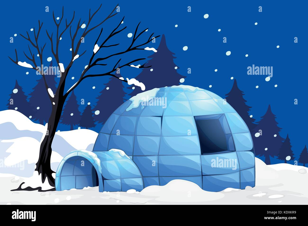 hight resolution of nature scene with igloo on snowy night illustration