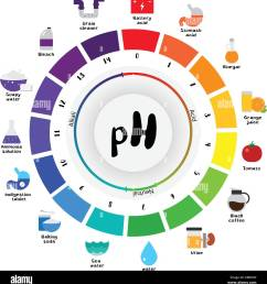 the ph scale universal indicator ph color chart diagram acidic alkaline values common substances vector illustration flat icon design colorful [ 1253 x 1390 Pixel ]
