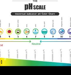 test ph scale diagram wiring diagram go test ph scale diagram [ 1300 x 749 Pixel ]
