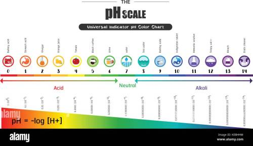 small resolution of test ph scale diagram wiring diagram go test ph scale diagram