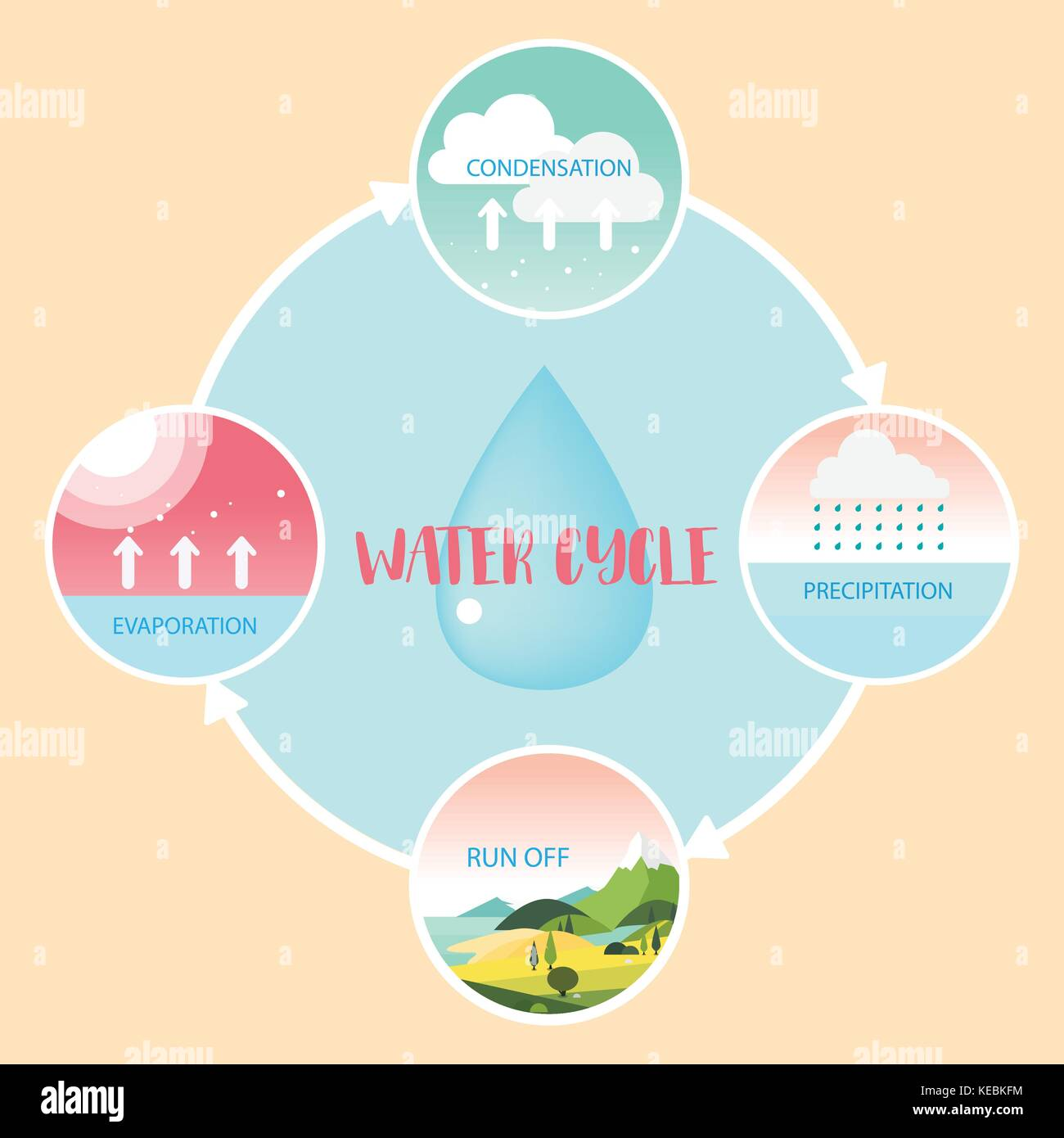 hight resolution of water cycle information grapic illustration vecter design stock image