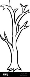 Bare tree cartoon outline vector design isolated on white background Stock Vector Image & Art Alamy