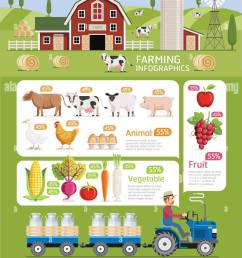 farming infographic elements template vector illustration can be used for workflow layout banner diagram web designs [ 1034 x 1390 Pixel ]