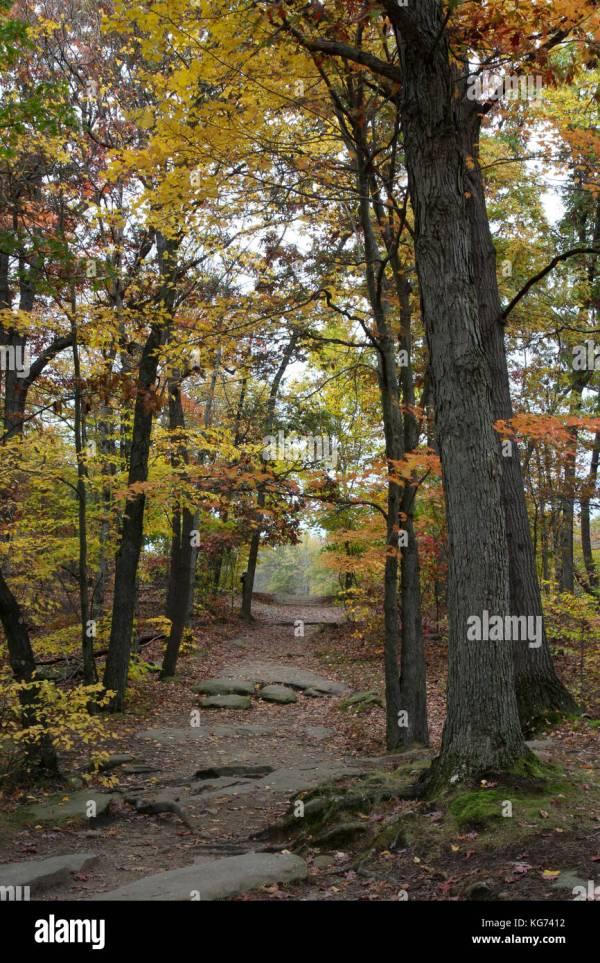 Cleveland Ohio Autumn Colors Stock &