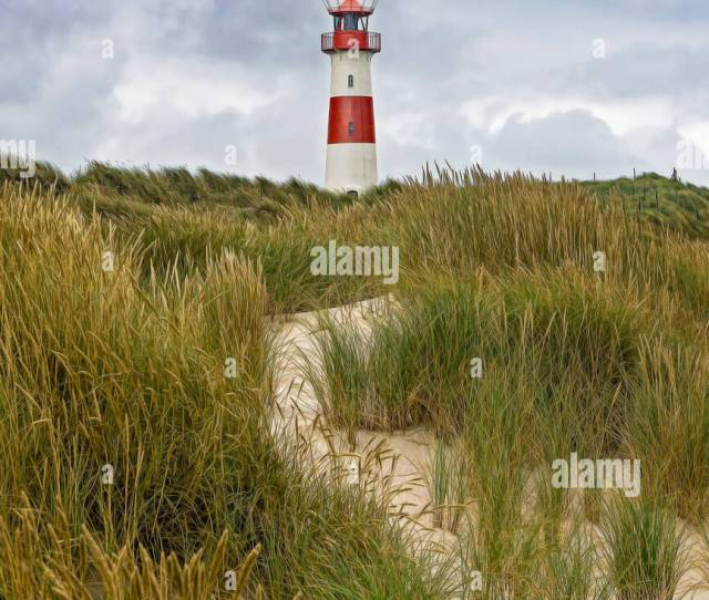 Lighthouse List Sylt Germany Digital Painting Stock Image