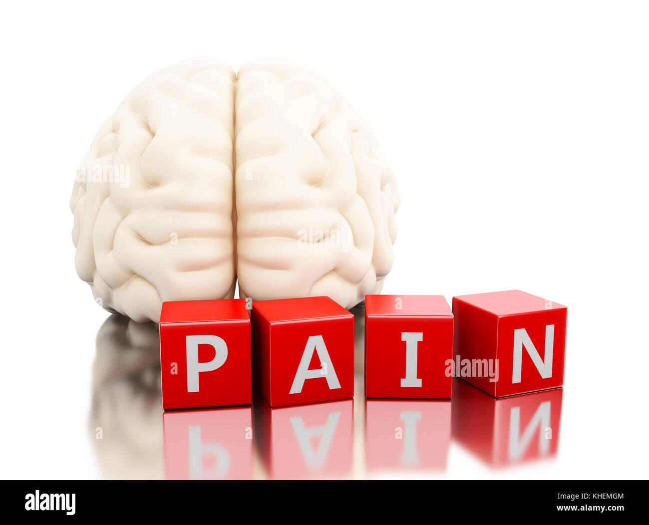 hight resolution of human brain with pain word in cubes science anatomy concept isolated